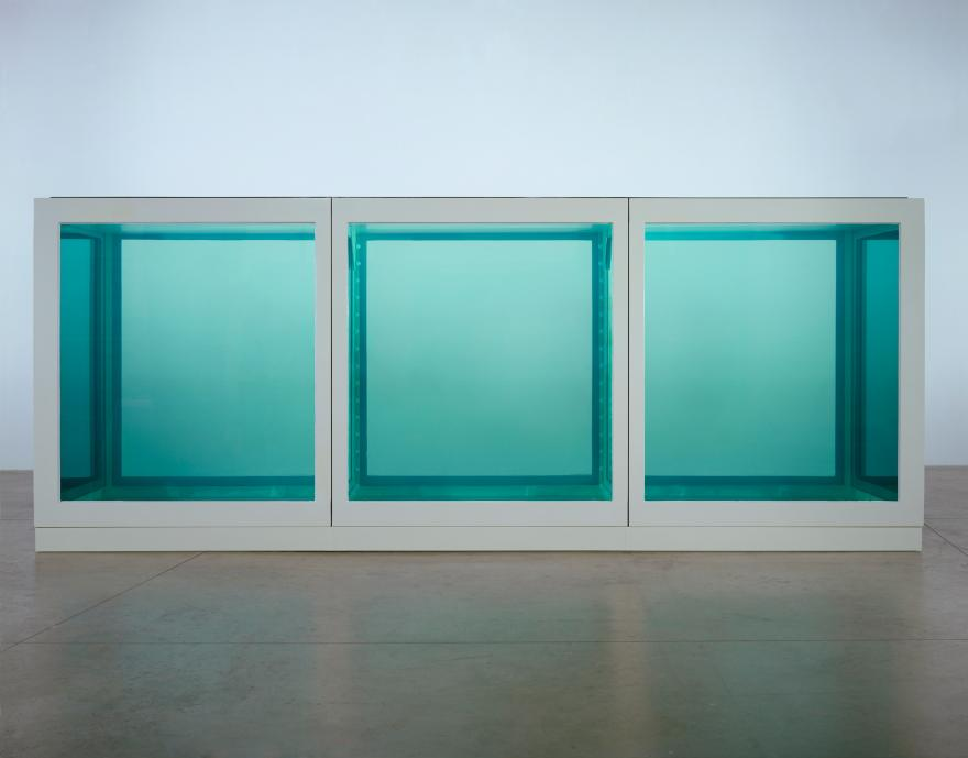 The Physical Impossibility. Homage to Damien Hirst.